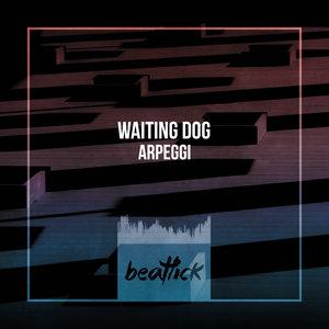 WAITING DOG - Arpeggi