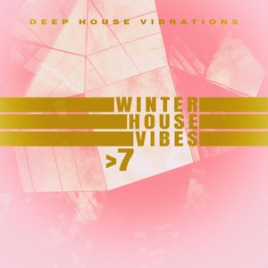 VARIOUS - Winter House Vibes >7