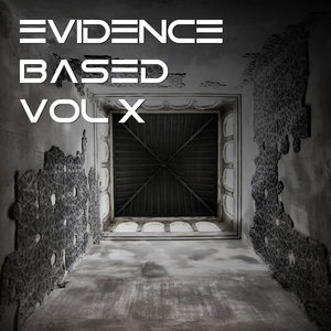 VARIOUS - Evidence Based Vol 10