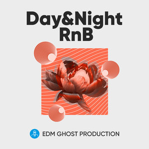 EDM GHOST PRODUCTIONS - Day & Night RnB (Sample Pack WAV)