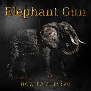 ELEPHANT GUN - Now To Survive (Explicit)