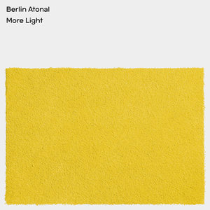 VARIOUS - Berlin Atonal: More Light