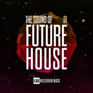 VARIOUS - The Sound Of Future House Vol 01