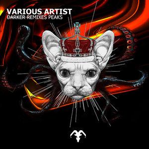 VARIOUS - Darker Remixes Peaks