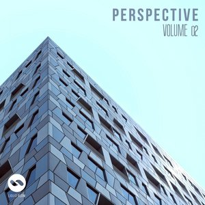 VARIOUS - Perspective Vol 2