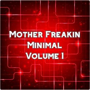 VARIOUS - Mother Freakin Minimal Vol 1