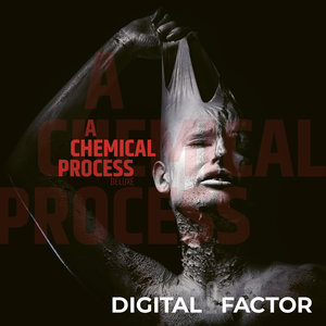 DIGITAL FACTOR - A Chemical Process