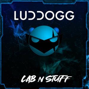 LUDDOGG - Lab N Stuff