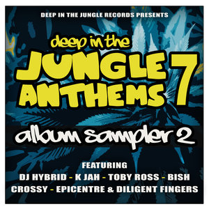 VARIOUS - Deep In The Jungle Anthems 7 - LP Sampler 2