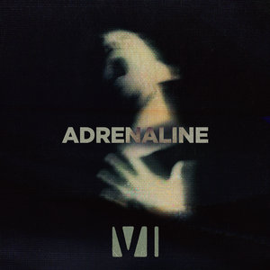 Adrenaline by You Me At Six on MP3, WAV, FLAC, AIFF & ALAC at Juno Download