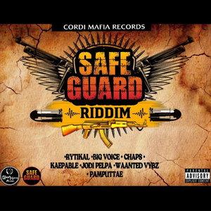 VARIOUS - Safeguard Riddim (Explicit)