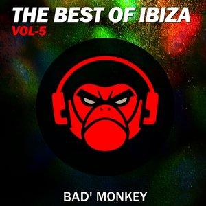 BAD MONKEY/VARIOUS - The Best Of Ibiza Vol 5