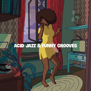 VARIOUS - Acid Jazz & Funky Grooves