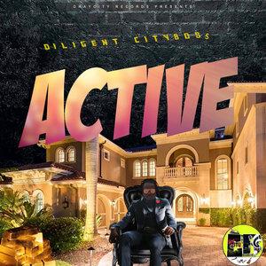 DILIGENT CITYBOSS - Active