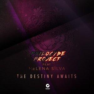 PSILOCYBE PROJECT FEAT HELENA SILVA - The Destiny Awaits