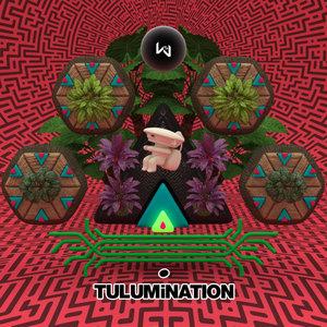 VARIOUS - Tulumination III