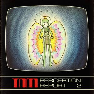 THE NIGHT MONITOR - Perception Report 2