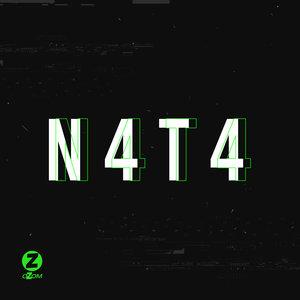 N4T4 - Networks