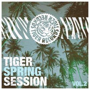 VARIOUS - Tiger Spring Session Vol 2