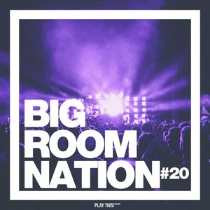VARIOUS - Big Room Nation Vol 20