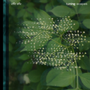EFFE EFFE - Tuning Scapes