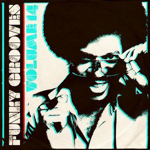 HANSI - Funky Grooves Vol 14