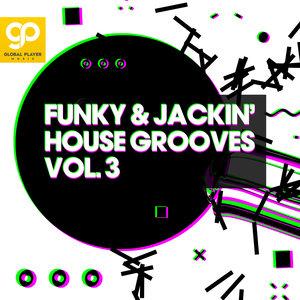 VARIOUS - Funky & Jackin' House Grooves Vol 3
