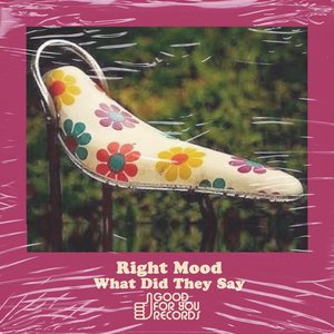 RIGHT MOOD - What Did They Say