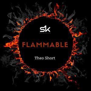THEO SHORT - Flammable (Original Mix)
