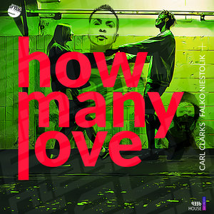 FALKO NIESTOLIK/CARL CLARKS - How Many Love