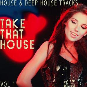 VARIOUS - Take That House Vol 1 - House & Deep House