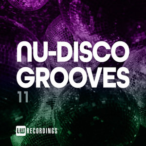 VARIOUS - Nu-Disco Grooves Vol 11