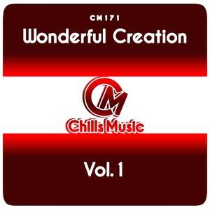 VARIOUS - Wonderful Creation Vol 1