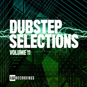 VARIOUS - Dubstep Selections Vol 11