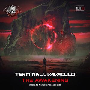 TERMINAL/VAVACULO - The Awakening