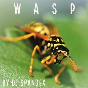 DJ SPANDEX - Wasp