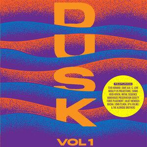 VARIOUS - Dusk Volume 1