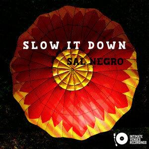 SAL NEGRO - Slow It Down