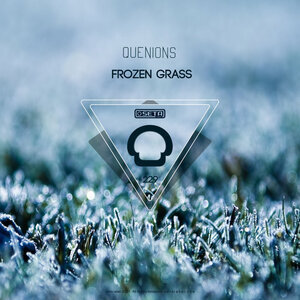 QUENIONS - Frozen Grass