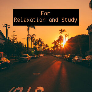 VARIOUS - For Relaxation & Study