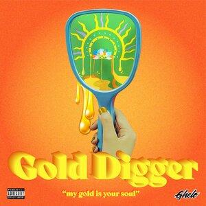 JAYHAAN/KVUIPSTER FEAT SRISHTY KAMBOJ - Gold Digger (Explicit)