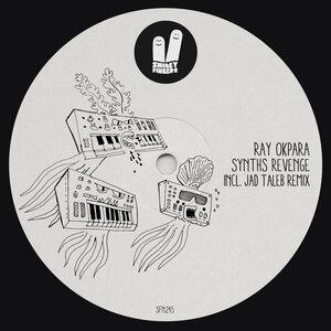 RAY OKPARA - Synths Revenge
