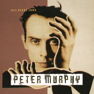 PETER MURPHY - All Night Long