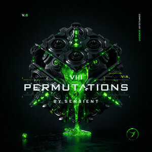 VARIOUS - Permutations Vol 8