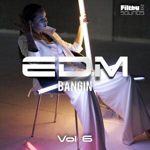 VARIOUS - Bangin EDM Vol 6