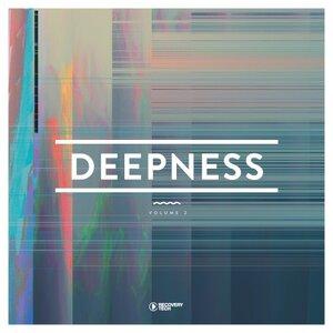VARIOUS - Deepness Vol 2