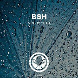 BSH - Moody Yeah