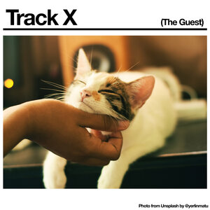 BLACK COUNTRY/NEW ROAD - Track X (The Guest)