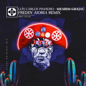 LUIS CARLOS PINHEIRO - Mearim Grajau