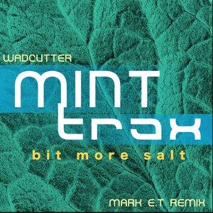 Wadcutter - Bit More Salt (Mark E.T Remix)